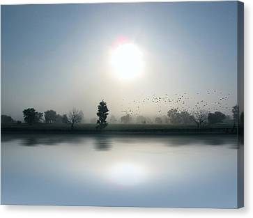 Starlings Misty Morning - Limited Edition Canvas Print