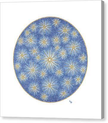 Starlit Sky Canvas Print by Vanda Omejc