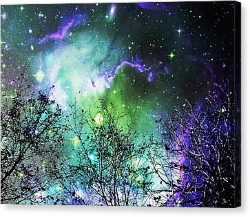 Starry Night Canvas Print by Anastasiya Malakhova