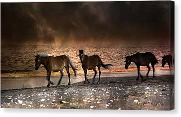 Chestnut Horse Canvas Print - Starry Night Beach Horses by Betsy Knapp