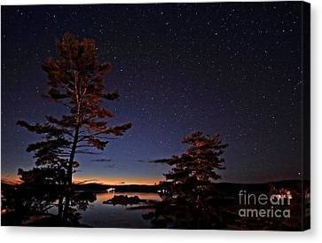 Starry Night In Northern Ontario Canvas Print by Charline Xia