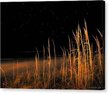 Starry Night Over The Atlantic Canvas Print by Matt Taylor