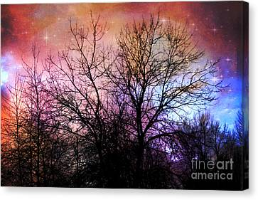 Canvas Print featuring the photograph Starry Night by Sylvia Cook