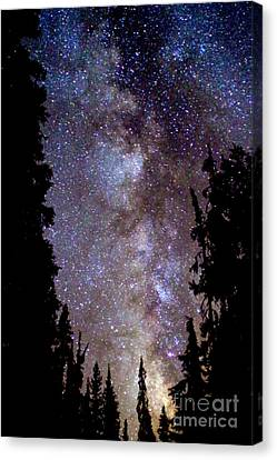 Starry Night -  The Milky Way Canvas Print by Douglas Taylor