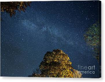 Canvas Print featuring the photograph Starry Skies by Martin Konopacki
