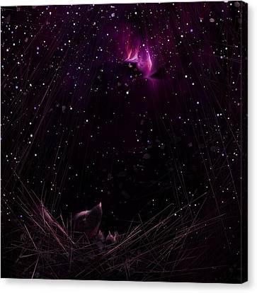 Starry Starry Night Canvas Print by Rachel Christine Nowicki