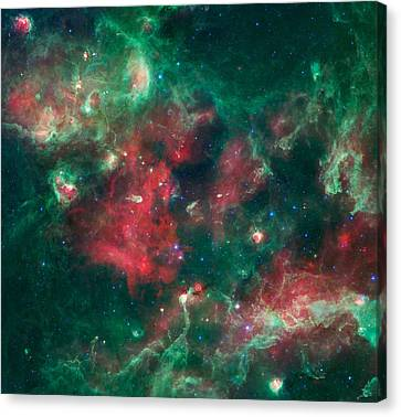 Stars Brewing In Cygnus X Canvas Print by Jennifer Rondinelli Reilly - Fine Art Photography