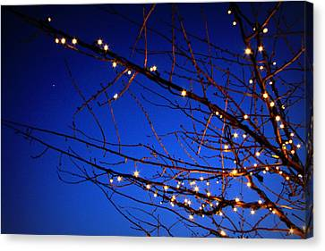 Canvas Print featuring the photograph Stars On Branches by Aurelio Zucco