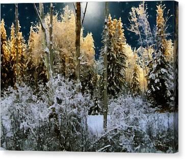 Starshine On A Snowy Wood Canvas Print by RC deWinter