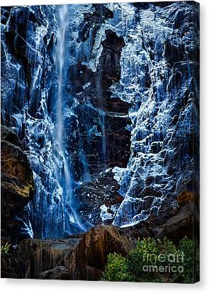 Start Of Spring Bridalvail Fall Canvas Print