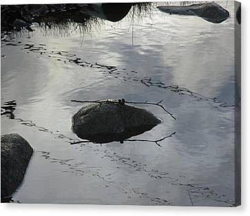 Canvas Print featuring the photograph Stay In The Middle My Friend by Marie Neder