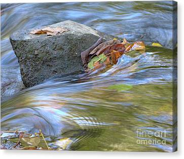 Canvas Print featuring the photograph Steadfast by Jane Ford
