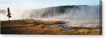 Canvas Print featuring the photograph Steam Creek by David Andersen
