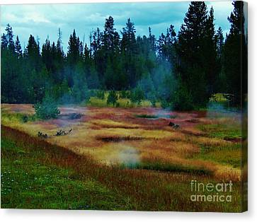 Steam Marsh Canvas Print by Larry Campbell