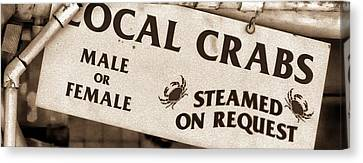 Steamed Crabs - Mike Hope Canvas Print