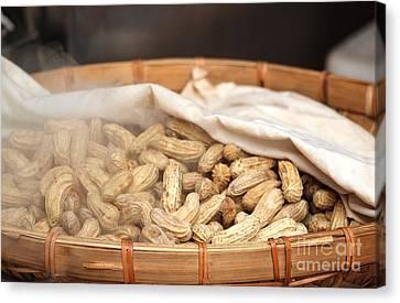 Steamed Peanuts Canvas Print by Yali Shi