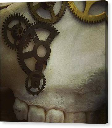 #steampunk #skull #clockworks #cogs Canvas Print