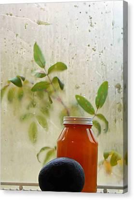 Steamy Window Canvas Print by Pamela Patch