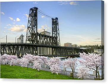 Steel Bridge And Cherry Blossom Trees In Portland Oregon Canvas Print