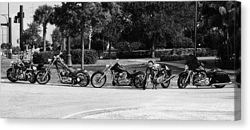 Steel Horses Canvas Print by Laura Fasulo