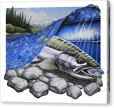 Salmon Canvas Print - Steelhead Dreams by Nick Laferriere