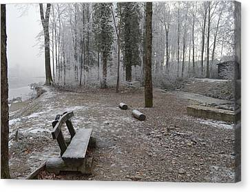 Canvas Print featuring the photograph Steep And Frost - 3 by Felicia Tica