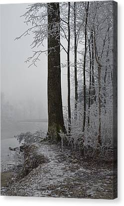 Steep And Frost Canvas Print by Felicia Tica