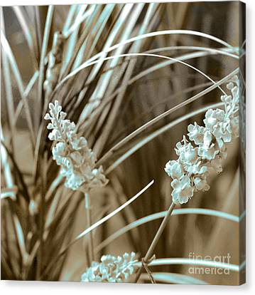 Stems II Canvas Print by Yanni Theodorou