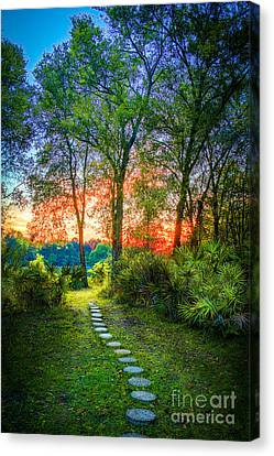 Stepping Stones To The Light Canvas Print by Marvin Spates