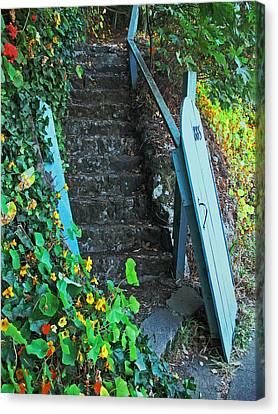 Steps To Somewhere Canvas Print by Connie Fox