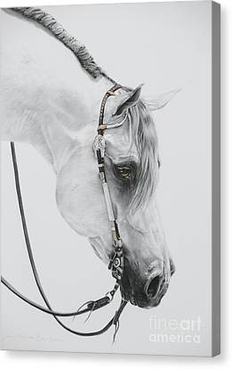 Forelock Canvas Print - Sterling by Joni Beinborn