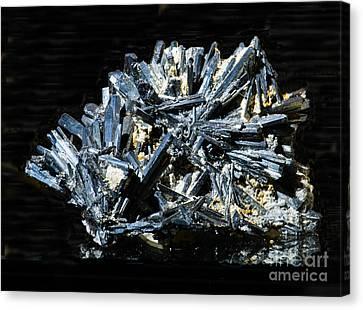 Inorganic Solid Canvas Print - Stibnite Crystals by Millard H. Sharp