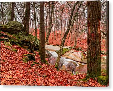Stickney Brook 2 Canvas Print