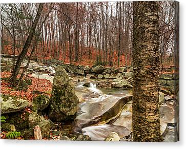 Stickney Brook 3 Canvas Print