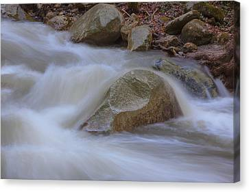 Stickney Brook Rock Canvas Print by Tom Singleton