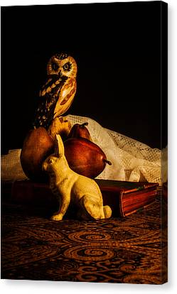 Still Life - Owl Pears And Rabbit Canvas Print by Jon Woodhams