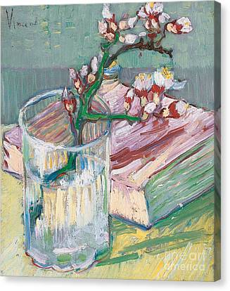 Still Life    A Flowering Almond Branch Canvas Print by Vincent Van Gogh