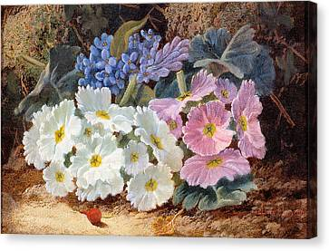 Still Life Of Flowers Canvas Print by Oliver Clare