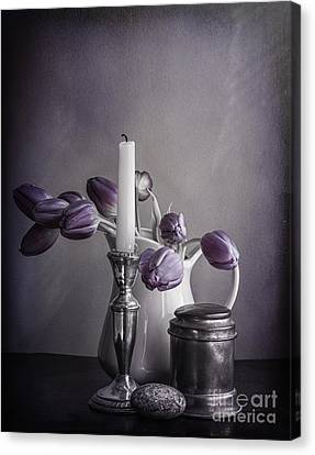 Still Life Study In Purple Canvas Print by Terry Rowe
