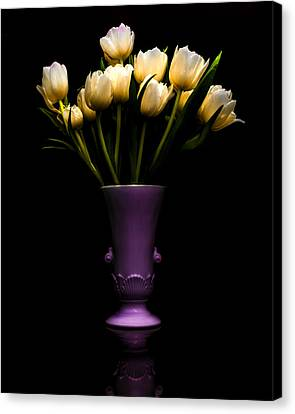 Still Life - White Tulips Canvas Print