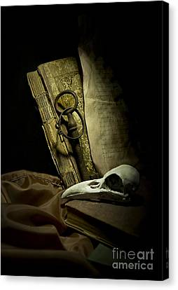 Still Life With A Bird Skull Canvas Print by Jaroslaw Blaminsky