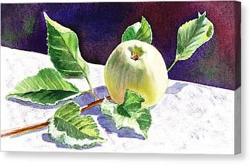 Value Canvas Print - Still Life With Apple by Irina Sztukowski