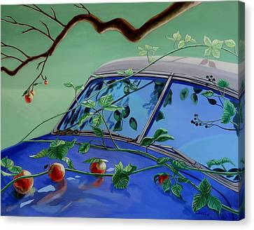 Canvas Print featuring the painting Still Life With Car by Sally Banfill