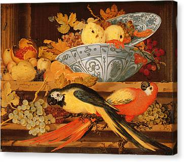 Still Life With Fruit And Macaws, 1622 Canvas Print