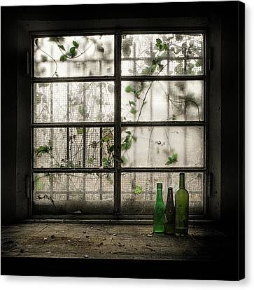 Still-life With Glass Bottle Canvas Print