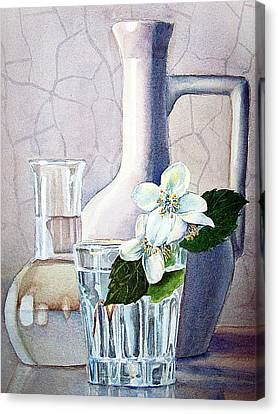 Still Life With Jasmine Canvas Print by Irina Sztukowski
