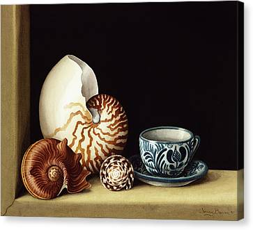 Still Life With Nautilus Canvas Print by Jenny Barron