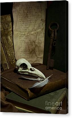 Still Life With Old Books Rusty Key Bird Skull And Feathers Canvas Print by Jaroslaw Blaminsky