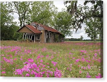 Still Life With Old House Canvas Print by Theresa Willingham