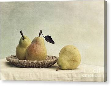 Still Life With Pears Canvas Print by Priska Wettstein